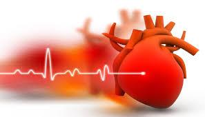 moringa hypertension